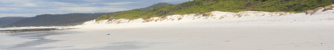 east coast beach CROP2
